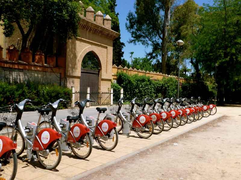 transporte ecologico para su empresa