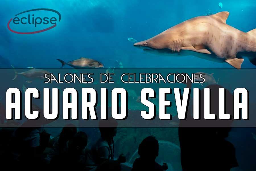 celebraciones acuario de sevilla