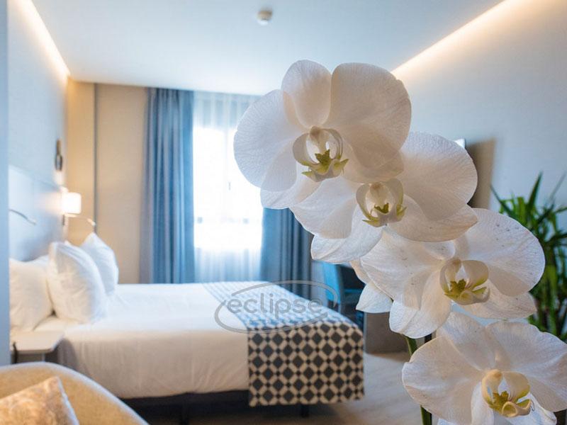 Hotel El Americano