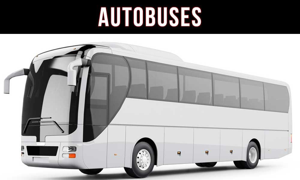 rotulacion de autobuses